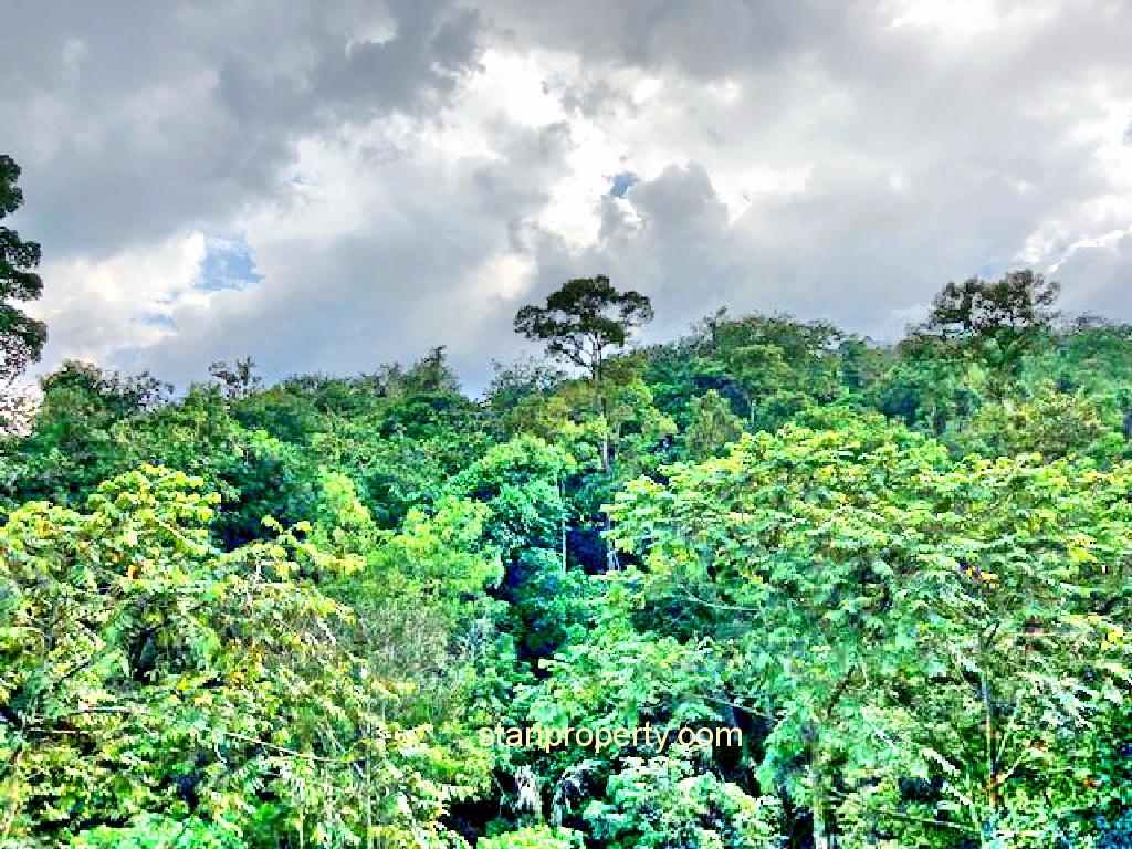Stunning Bungalow Land